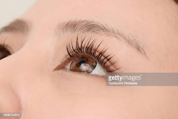 close-up of extended eyelashes - つけまつげ ストックフォトと画像