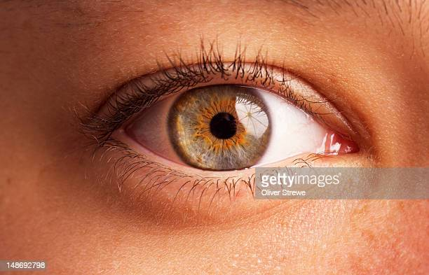 close-up of eye. - human eye stock pictures, royalty-free photos & images