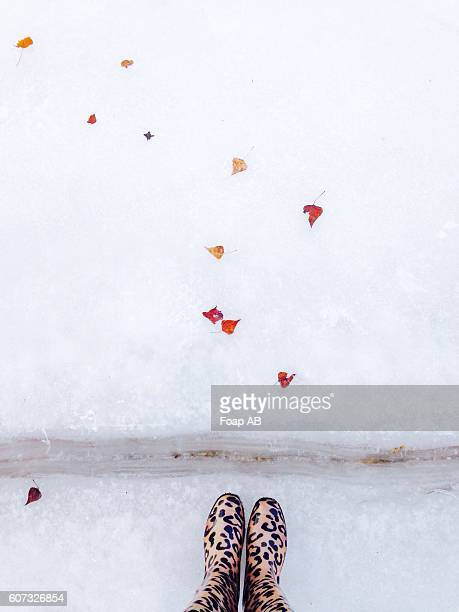 Close-up of feet on the snow