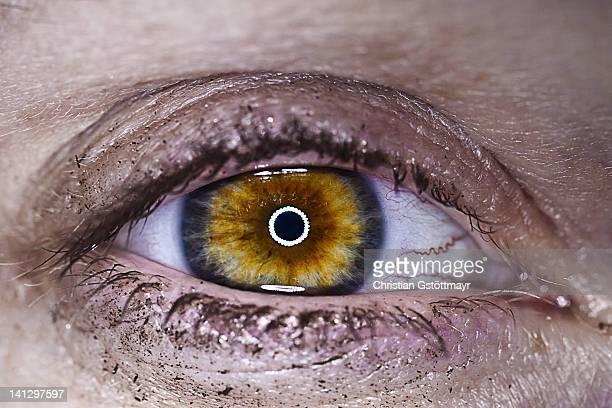 Close-up of female amber eye