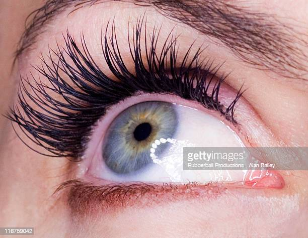 close-up of female eye - false eyelash stock pictures, royalty-free photos & images