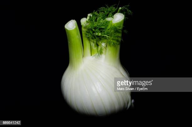 Close-Up Of Fennel Over Black Background