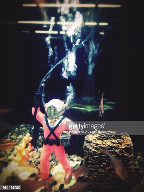 Close-Up Of Figurine In Fish Tank