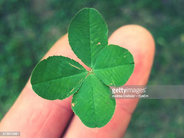 close-up of finger holding four leaf clover outdoors - 4 leaf clover stock photos and pictures