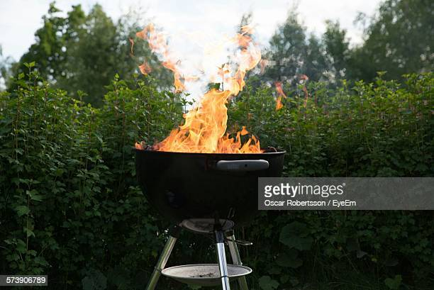 Close-Up Of Fire In Barbecue Against Plants