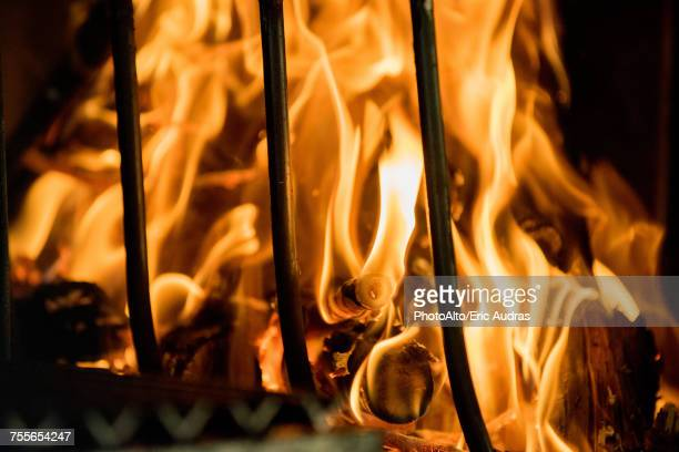 close-up of fire - the four elements stock pictures, royalty-free photos & images