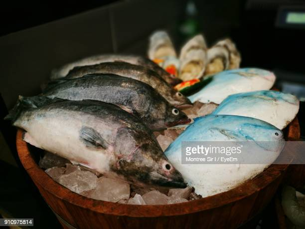 Close-Up Of Fish On Crushed Ice In Container