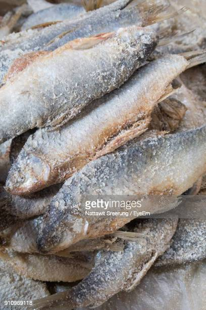 close-up of fishes for sale in market - 干物 ストックフォトと画像