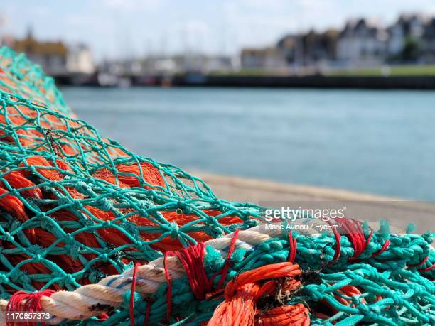 close-up of fishing net at harbor - trouville sur mer stock pictures, royalty-free photos & images