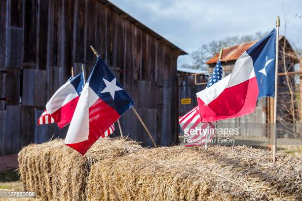 close-up of flags against sky - texas independence day stock pictures, royalty-free photos & images
