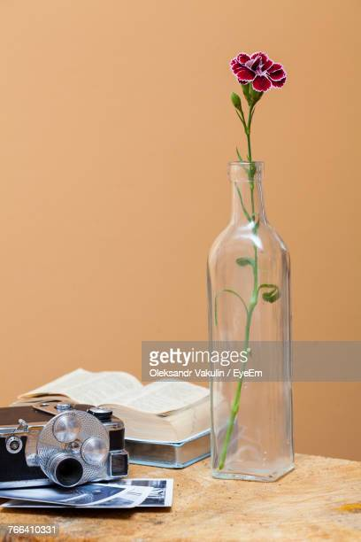 close-up of flower in container on table - oleksandr vakulin stock pictures, royalty-free photos & images