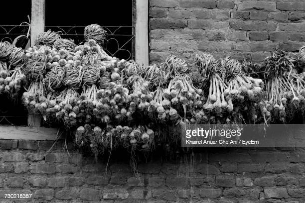 close-up of flowers against built structure - black and white vegetables stock photos and pictures