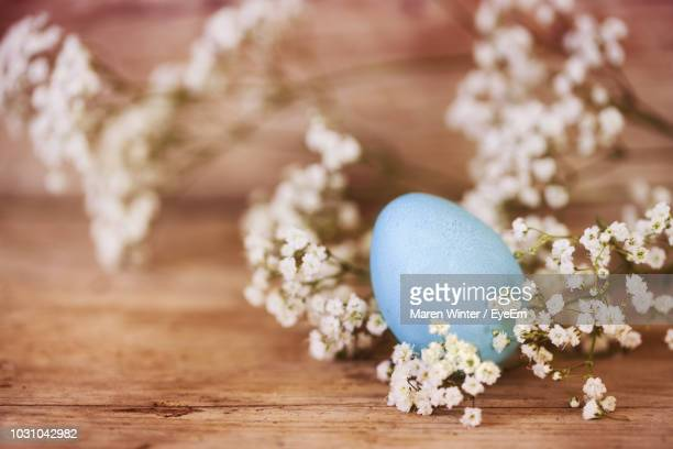close-up of flowers and easter egg on table - easter flowers stock pictures, royalty-free photos & images