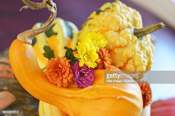 Close-Up Of Flowers And Pumpkins