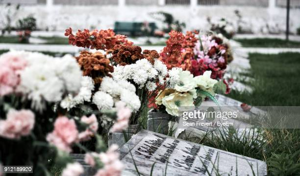close-up of flowers by tombstones at cemetery - lápida fotografías e imágenes de stock