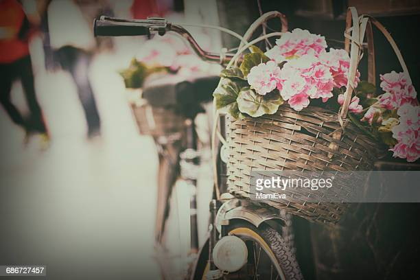 Close-up of flowers in a bicycle basket