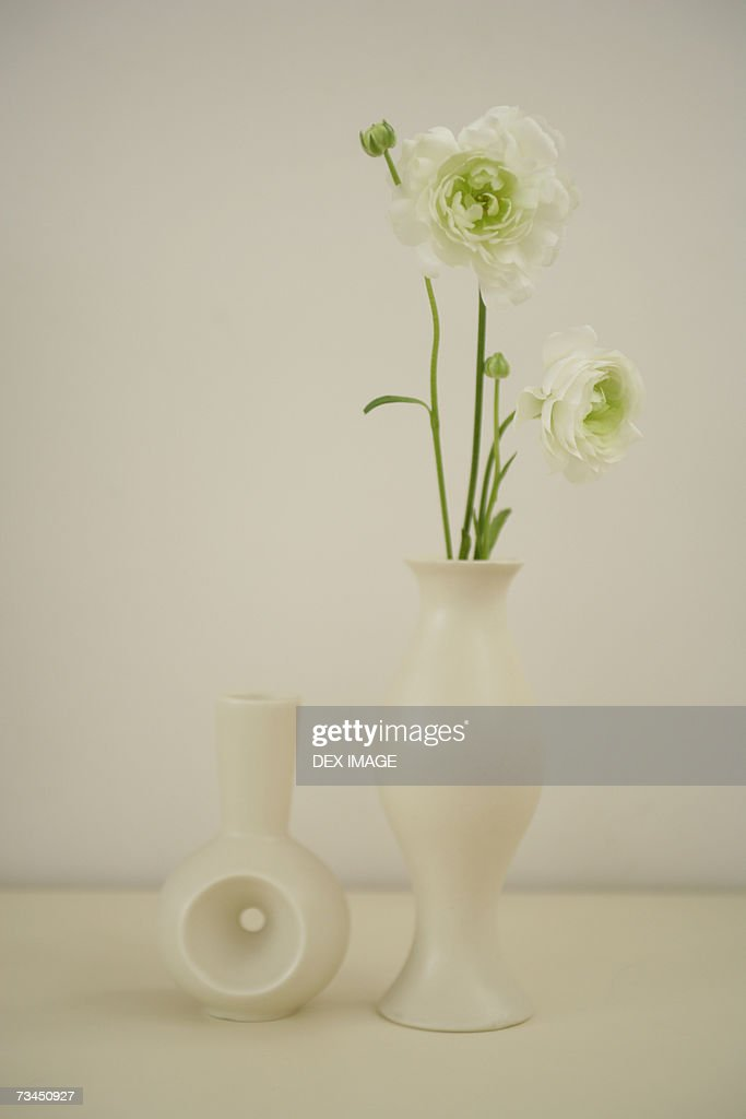 Closeup Of Flowers In A Flower Vase And An Empty Vase Stock Photo