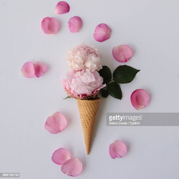 Close-Up Of Flowers In Ice Cream Cone Against White Background