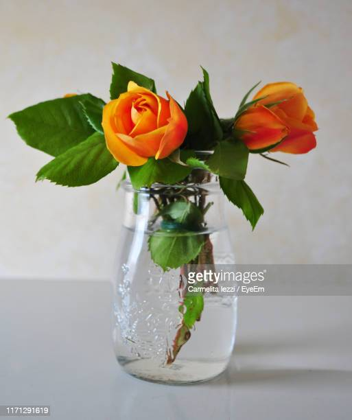 close-up of flowers in vase on table - carmelita iezzi foto e immagini stock