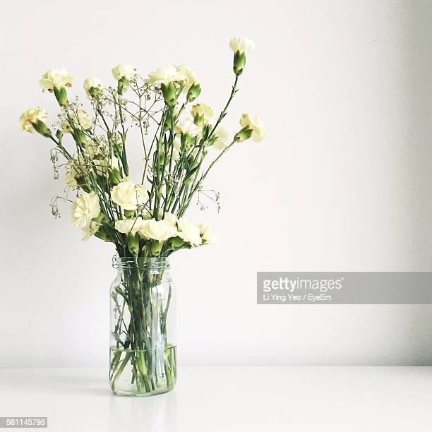 Close-Up Of Flowers On Vase Against White Background