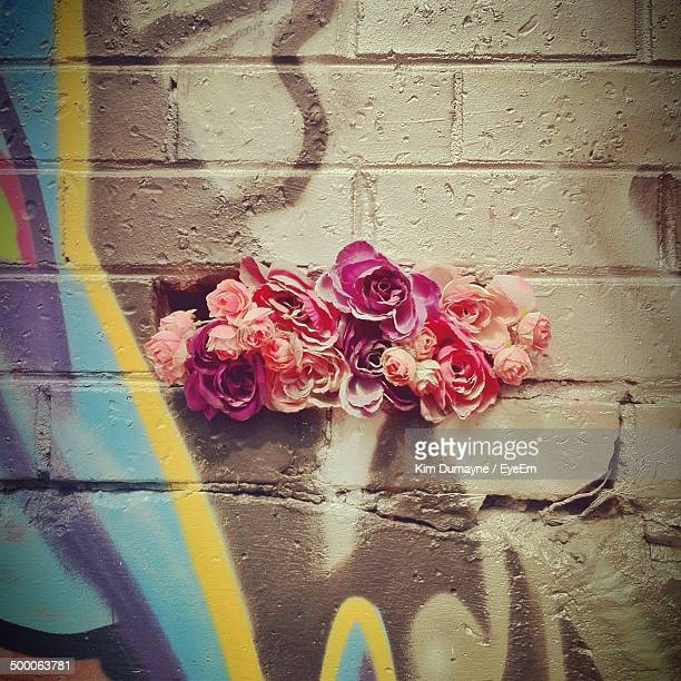 Close-up of flowers with graffiti on wall