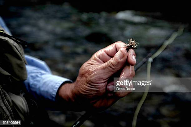 close-up of fly fisherman's hand holding fly, colorado, usa - robb reece stock pictures, royalty-free photos & images