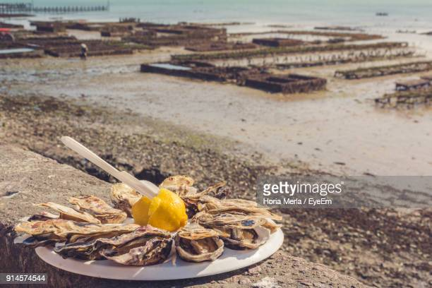 close-up of food in plate at beach - cancale photos et images de collection