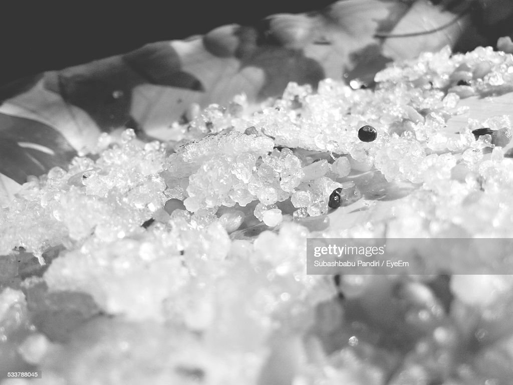 Close-Up Of Food In Tray : Foto stock
