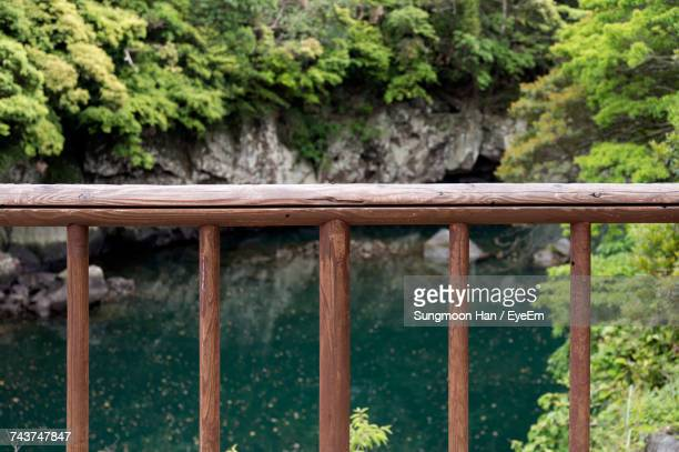 close-up of footbridge against river in forest - railing stock pictures, royalty-free photos & images