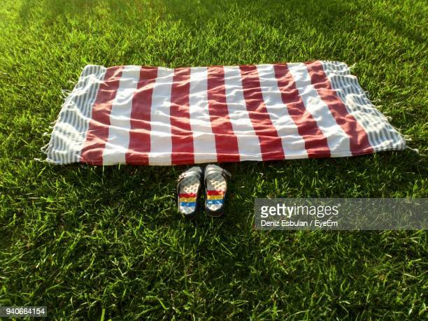 close-up of footwear and picnic blanket on grassy field at public park - picnic blanket stock pictures, royalty-free photos & images