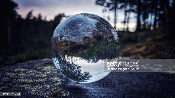 close-up of forest reflection at dusk through a glass crystal ball on a tree stump - china: through the looking glass stock pictures, royalty-free photos & images