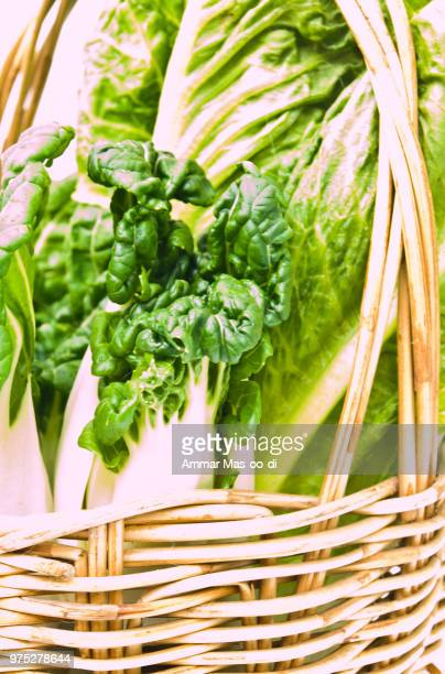 closeup of fresh  baby bok choy ans  cos salad in ratten basket - baby bok choy stock photos and pictures