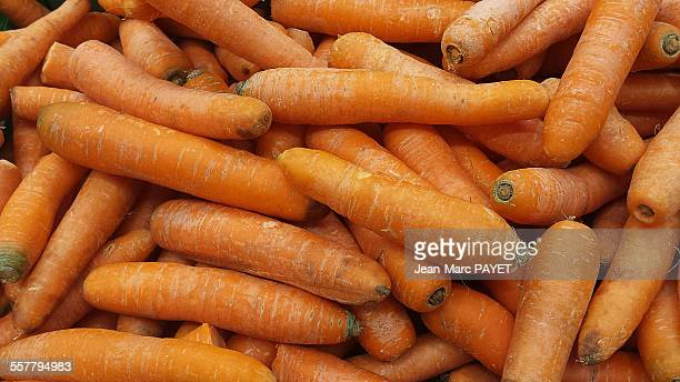 close-up of fresh carrots from organic farming - jean marc payet stockfoto's en -beelden