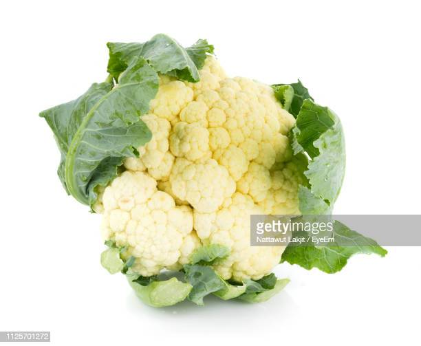 close-up of fresh cauliflower against white background - cauliflower stock pictures, royalty-free photos & images