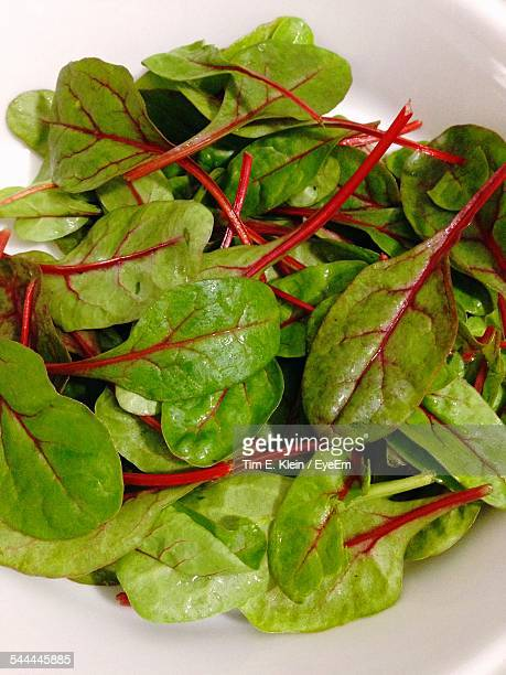 Close-Up Of Fresh Chard In Bowl