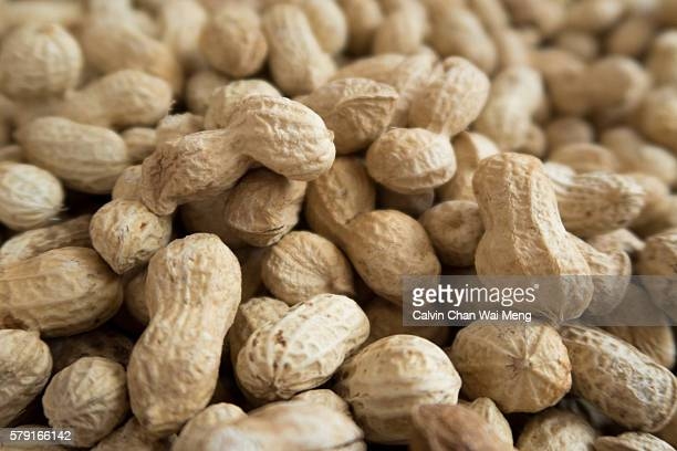 Close-up of fresh Chinese peanut in shell for sale
