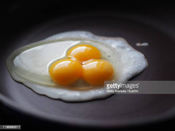 close-up of fresh egg in plate - egg white stock pictures, royalty-free photos & images