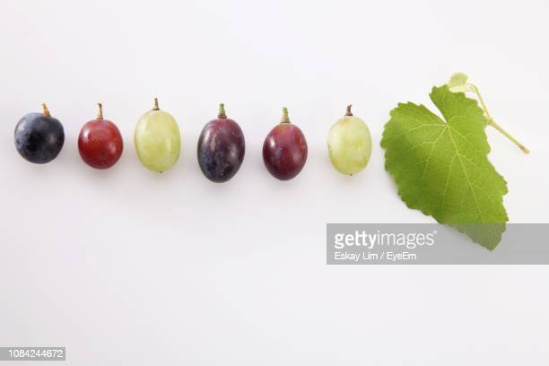 close-up of fresh grapes in row over white background - druif stockfoto's en -beelden