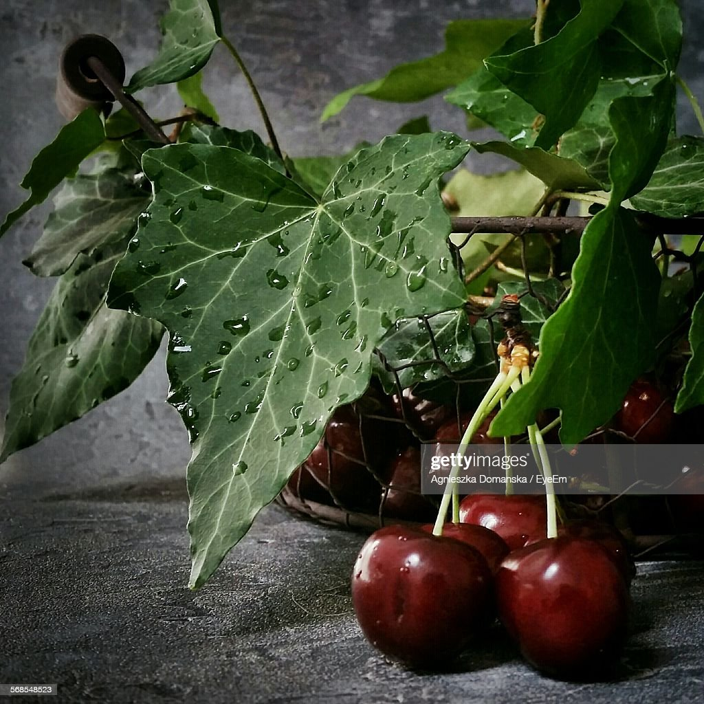 Close-Up Of Fresh Red Cherries In Basket With Water Drops : Stock-Foto