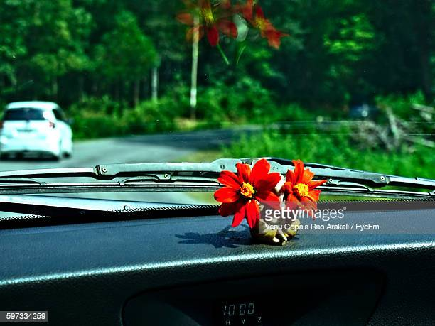 Close-Up Of Fresh Red Flowers On Car Dashboard