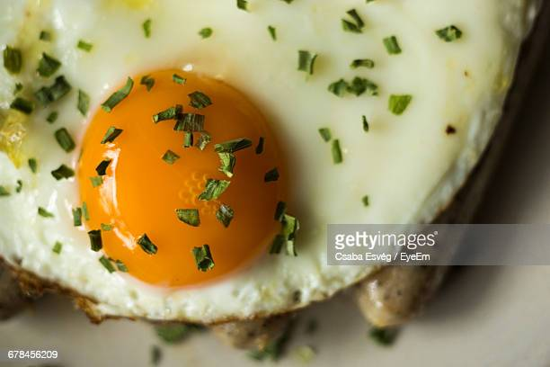 Close-Up Of Fried Egg On Plate