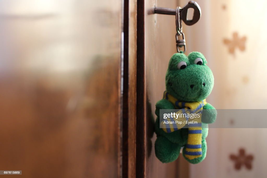 Close-Up Of Frog Shape Key Ring In Cabinet : Stock Photo