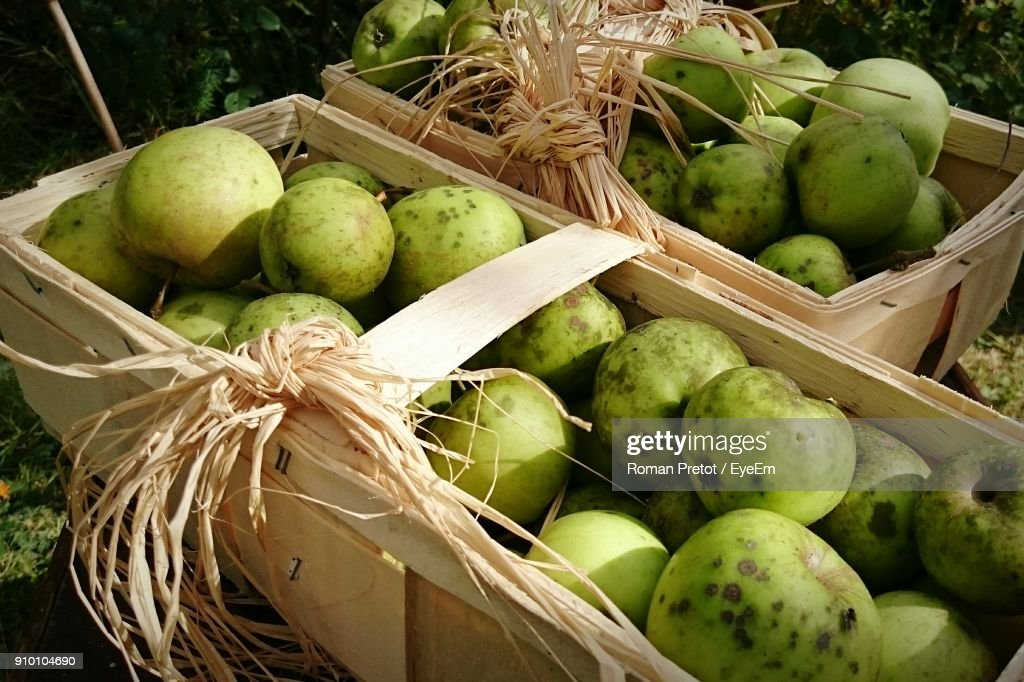 Close-Up Of Fruits In Box Outdoors : Stock-Foto