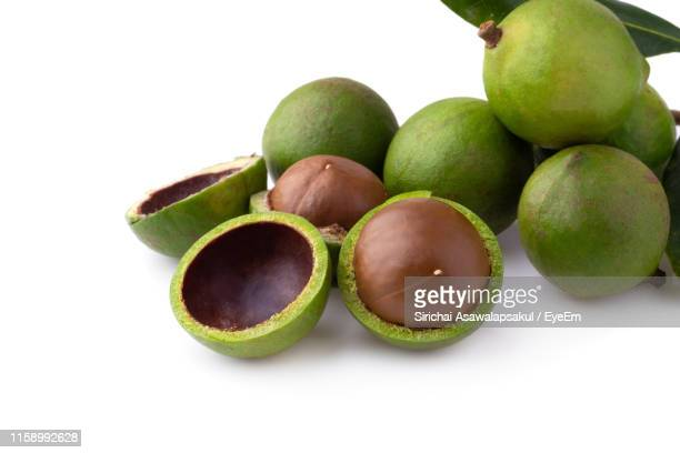 close-up of fruits on white background - macadamia nut stock photos and pictures