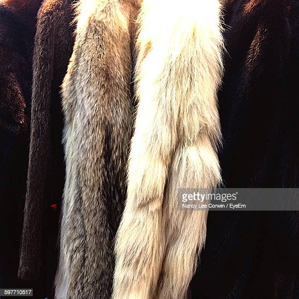 Close-Up Of Fur Coats