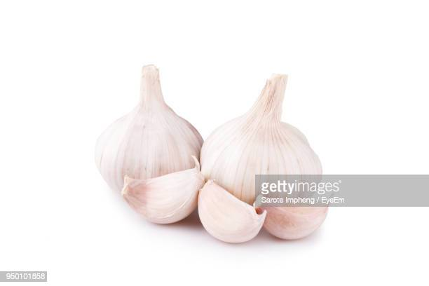 close-up of garlics against white background - garlic clove imagens e fotografias de stock
