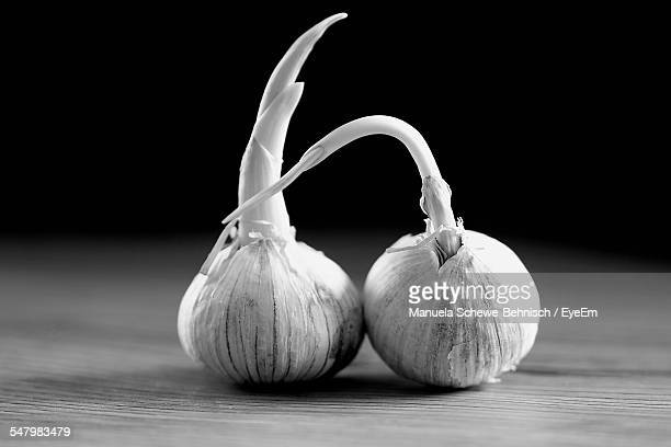 close-up of garlics on table - black and white vegetables stock photos and pictures