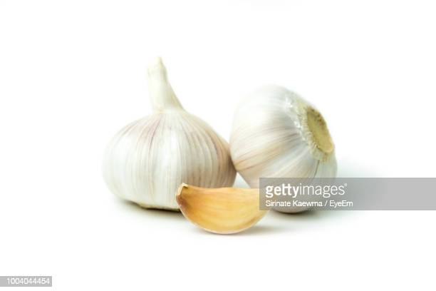 close-up of garlics on white background - garlic clove imagens e fotografias de stock