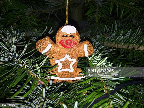 Close-Up Of Gingerbread Cookie Hanging On Tree