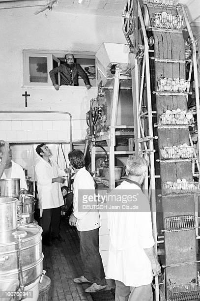Closeup Of Giovanni Trovato Provider Of Lemon En Sicile à Acireale 18 août 1975 Dans son usine le pourvoyeur de citrons Giovanni TROVATO barbu et...